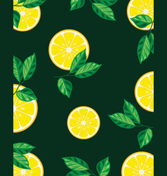 lemon slices with leaves vector image