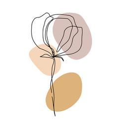 minimal card floral art design vector image