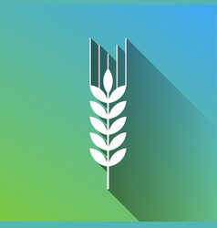 Wheat sign spike spica white icon vector