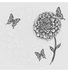 black-and-white flower with butterflies Hand-drawn vector image