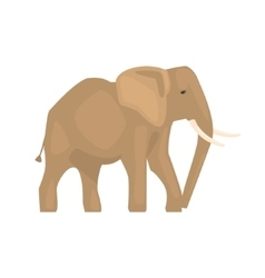 Elephant Realistic Simplified Drawing vector