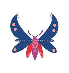 flying insect colorful butterfly top view vector image