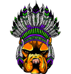 indian hat on head dog vector image