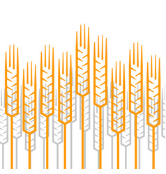 linear ears of wheat pattern vector image