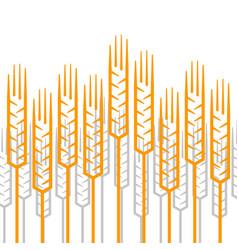 linear ears wheat pattern vector image