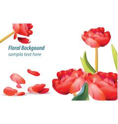 red tulip flower background spring season vector image