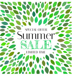 summer sale background template with leaves vector image