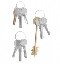 keys bunches vector image vector image
