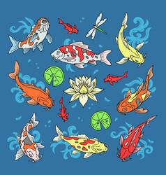 koi fish japanese carp and vector image