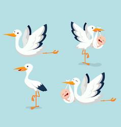 cartoon cute stork carrying baby vector image