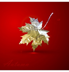 A silver metallic foil maple leaf on red vector