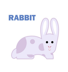 farm animal rabbit isolated vector image