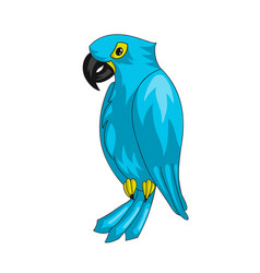 hyacinth macaw parrot icon vector image