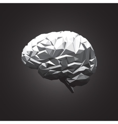 Paper Abstract Human Brain on Dark Background vector image