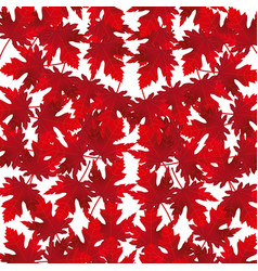 red maple leaves background vector image