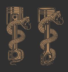 snake on car piston design element for poster vector image