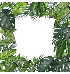Tropical palm leaves background jungle plants vector