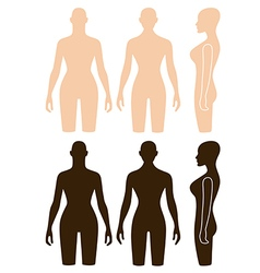 Woman mannequin outlined torso vector image