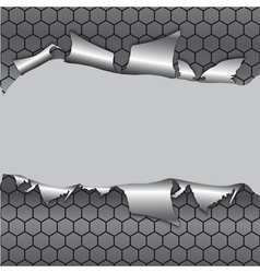hexagon metallic background vector image