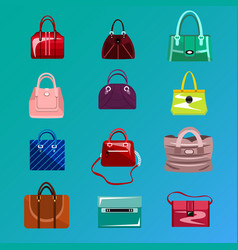 set womens bag icon vector image