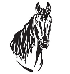 Decorative portrait of horse 2 vector