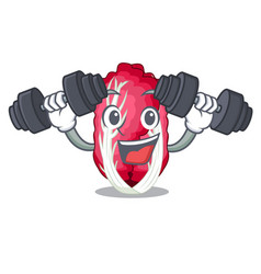 fitness radiccho in the shape of mascot vector image