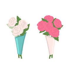 white and pink roses bouquet in wrappings set vector image