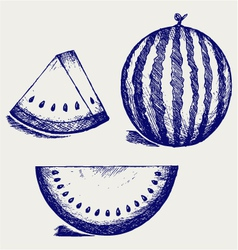 Whole and slices of watermelon vector image vector image