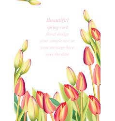 Red tulip flowers spring season invitation vector