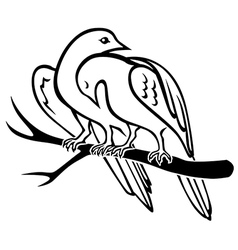 bird pair vector image