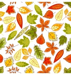 Autumn leaves pattern seamless background vector