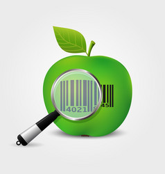Checking bar-code on green apple vector