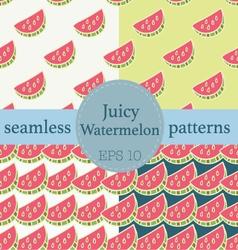 Juicy Watermelon seamless pattern set vector image
