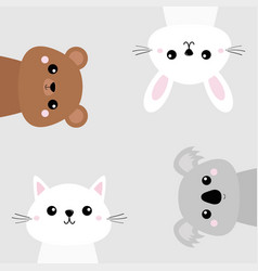 koala bear grizzly rabbit hare cat kitten head vector image