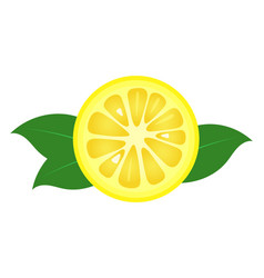 lemon fruit slice closeup icon round piece of vector image