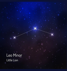 Little lion leo minor constellation in the night vector