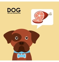 products for dogs vector image