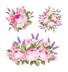 set rose lavender bouquets for your vector image
