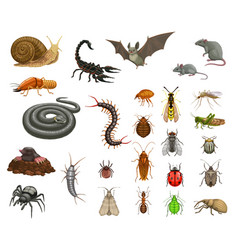 Agricultural home pests insects and animals set vector