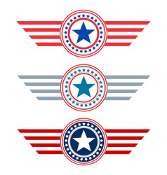 American flag symbolism decorative symbol icon vector