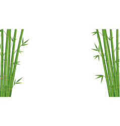 bamboo japan style on a white background vector image