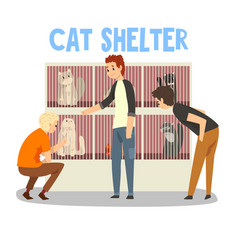 Cat shelter people adopting cat pet from animal vector