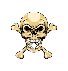 head skull with two bone crossed under vector image