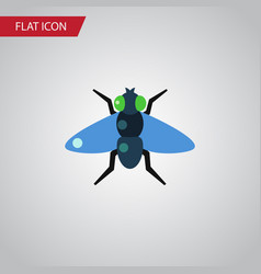 Isolated bluebottle flat icon dung element vector