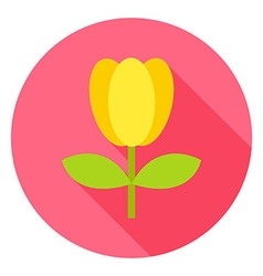 Spring Tulip Flower with Leaves Circle Icon vector image