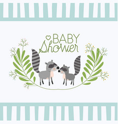baby shower card with cute raccoons couple vector image