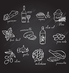 Hand drawn food ingredients vector