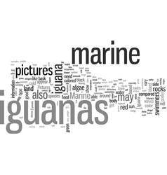 Iguana pictures vector
