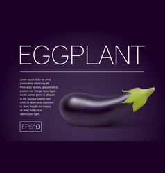 Photo-realistic fresh aubergine on a white vector