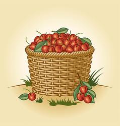 Retro basket cherries vector